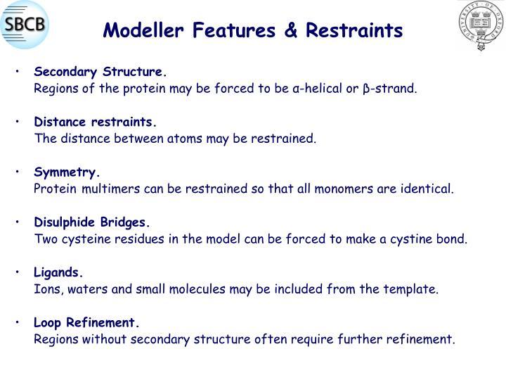 Modeller Features & Restraints