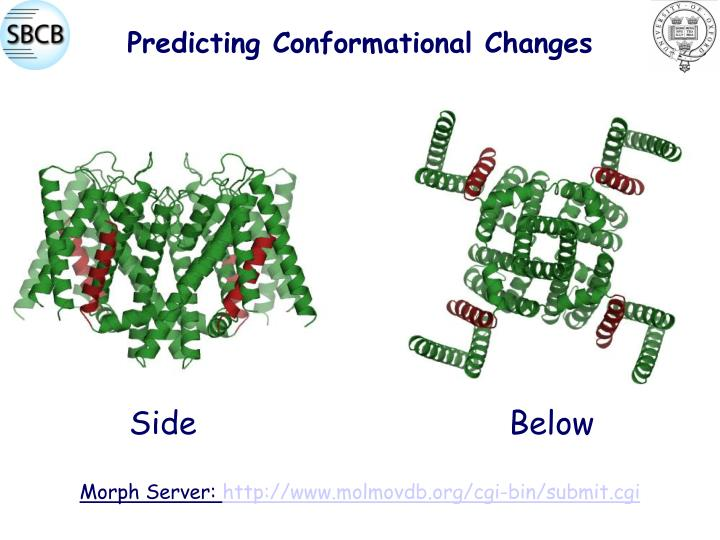 Predicting Conformational Changes