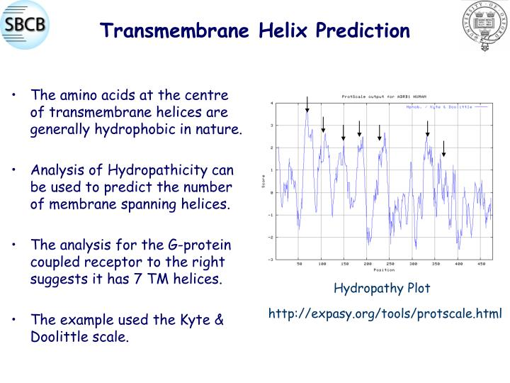 Transmembrane Helix Prediction