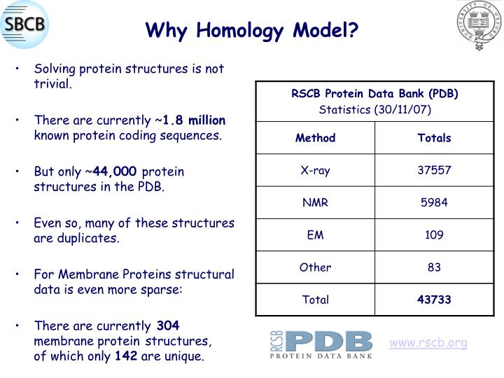 Why Homology Model?