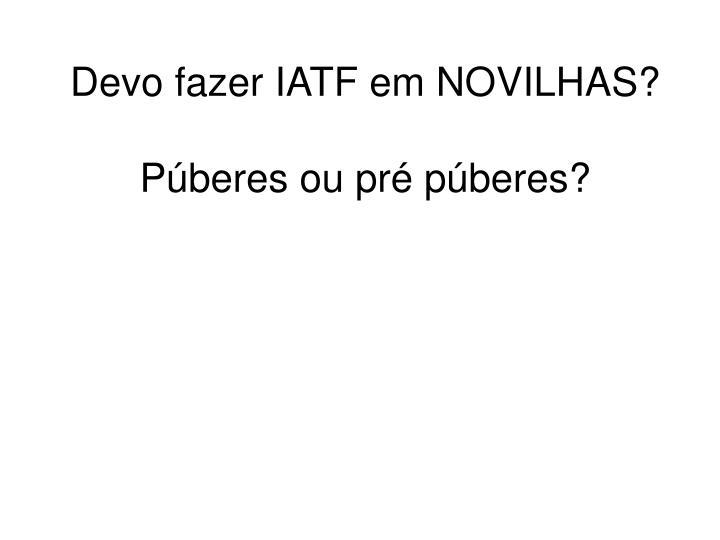 Devo fazer IATF em NOVILHAS?