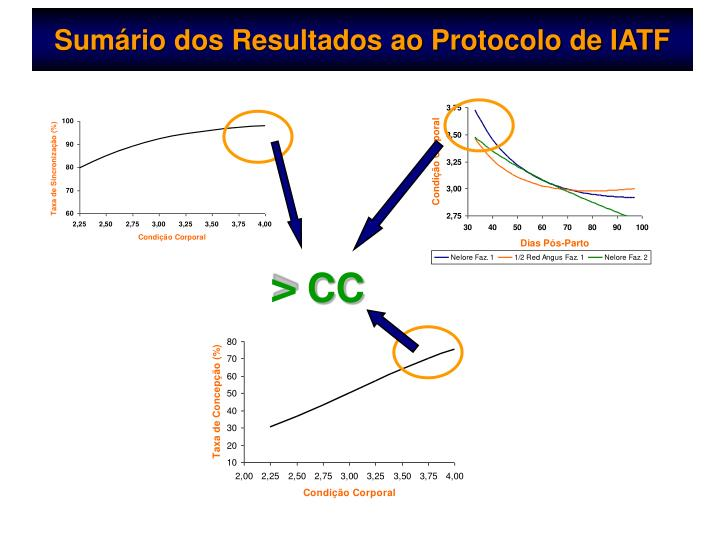 Sumário dos Resultados ao Protocolo de IATF