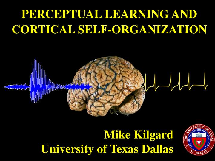 PERCEPTUAL LEARNING AND CORTICAL SELF-ORGANIZATION