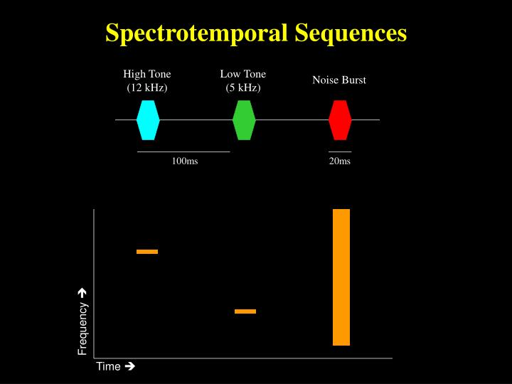 Spectrotemporal Sequences