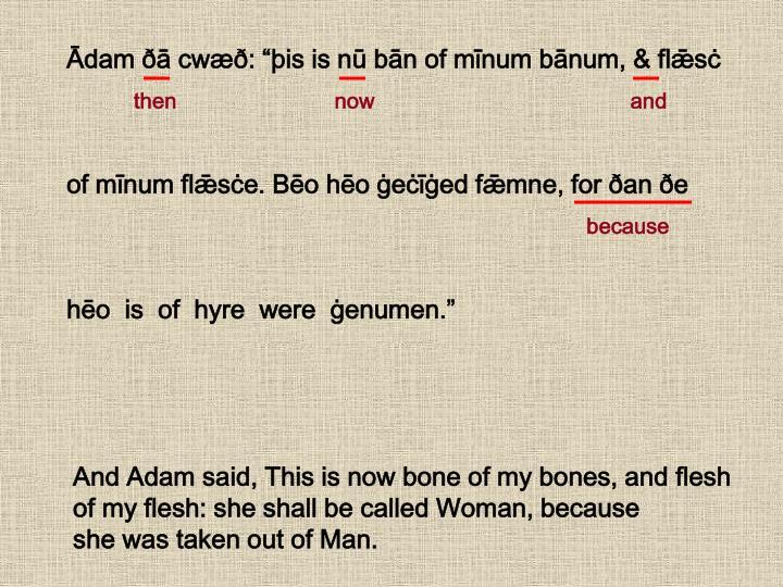 "Ādam ðā cwæð: ""þis is nū bān of mīnum bānum, & flǣsċ"