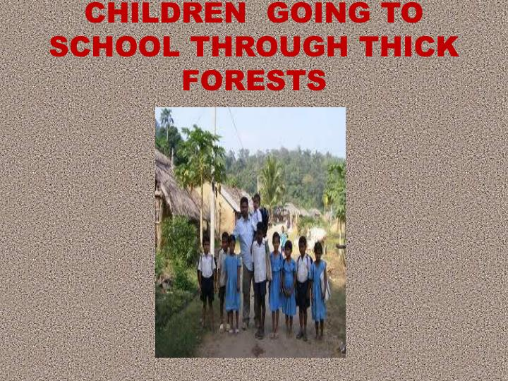 CHILDREN  GOING TO SCHOOL THROUGH THICK FORESTS