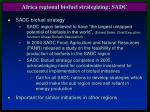 africa regional biofuel strategizing sadc