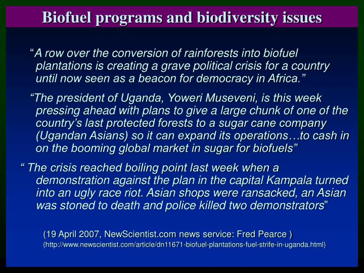 Biofuel programs and biodiversity issues