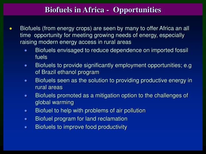 Biofuels in Africa -  Opportunities