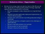 biofuels in africa opportunities