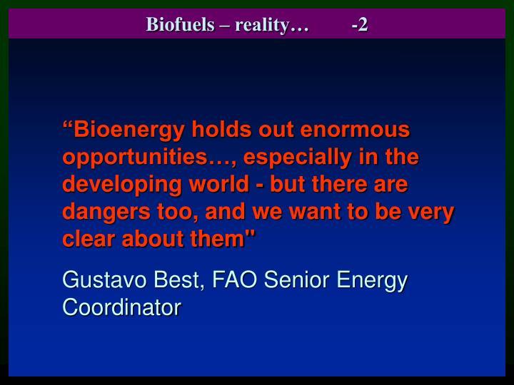 Biofuels – reality…-2