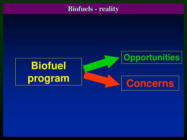 Biofuels - reality