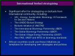 international biofuel strategizing