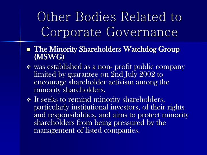 Other Bodies Related to Corporate Governance
