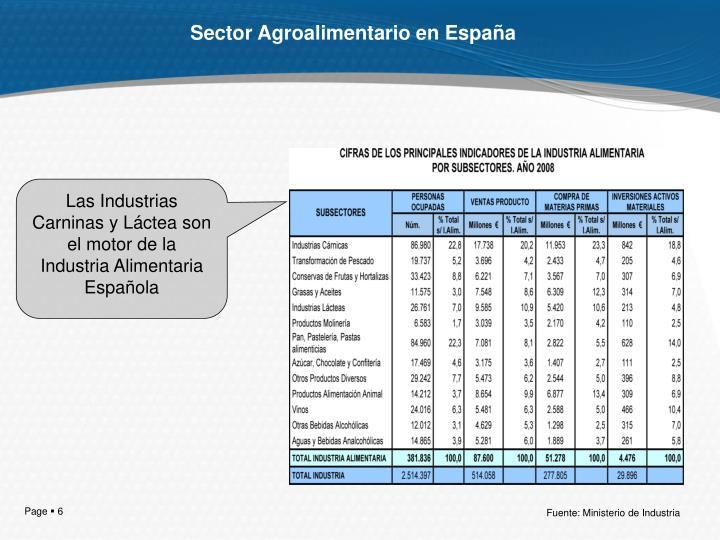 Sector Agroalimentario en España
