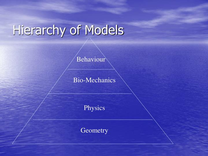 Hierarchy of Models