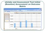 eintake and assessment tool initial baseline assessment on outcome matrix