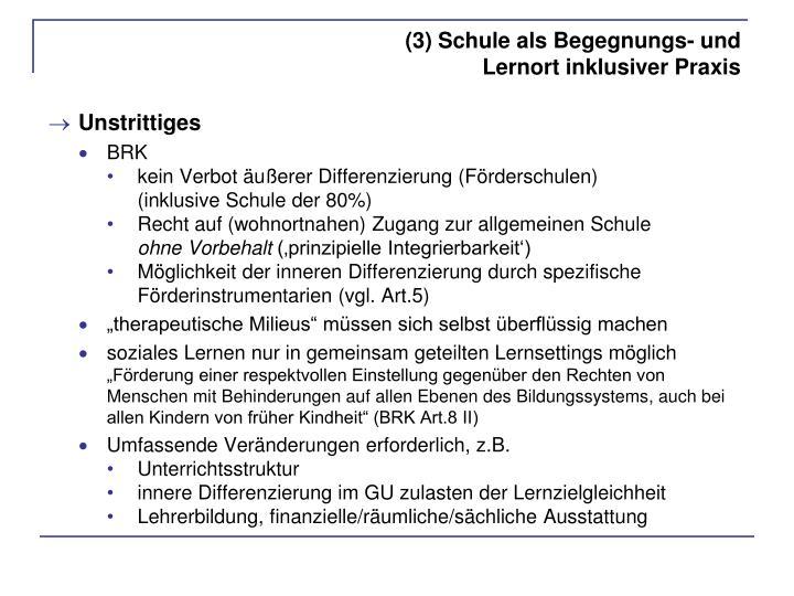 (3) Schule als Begegnungs- und