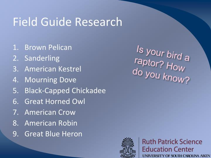 Field Guide Research