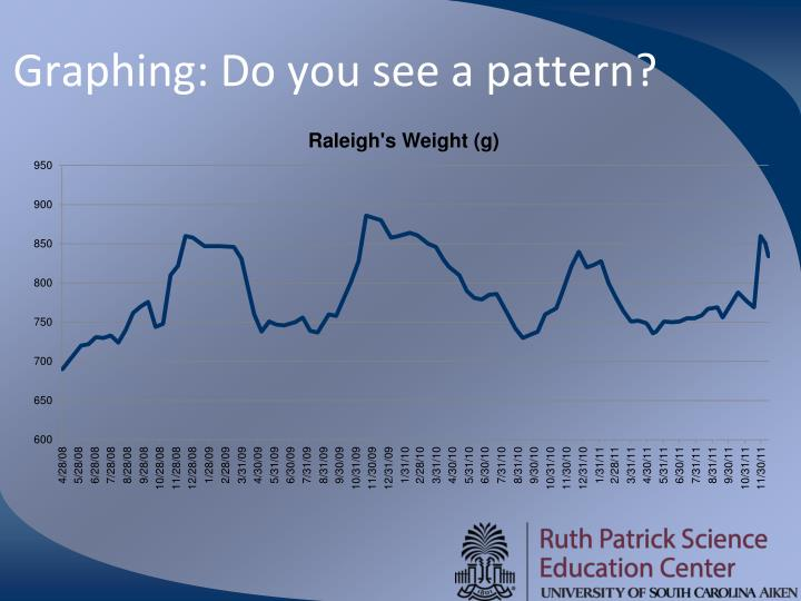 Graphing: Do you see a pattern?