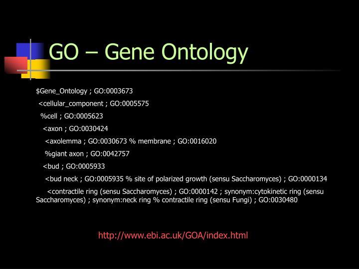 GO – Gene Ontology
