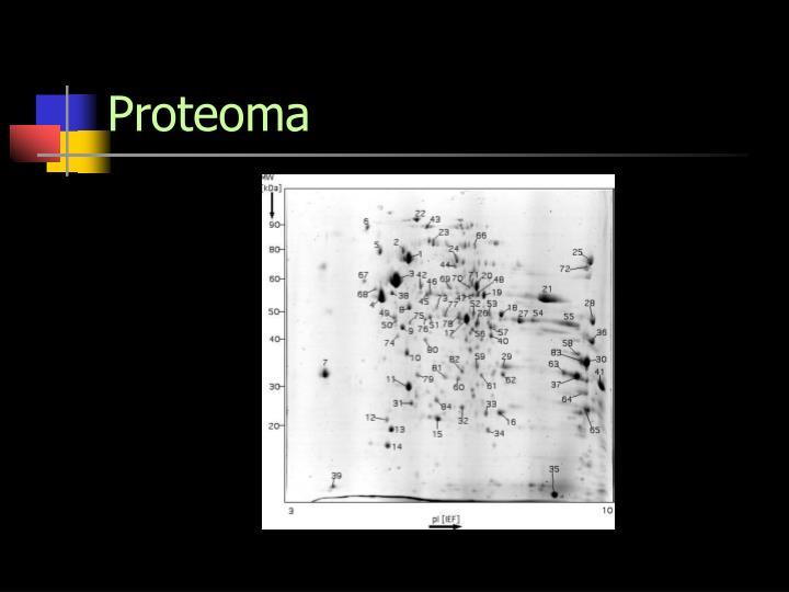 Proteoma