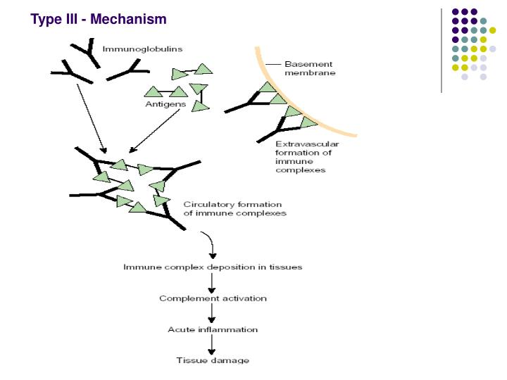 Type III - Mechanism