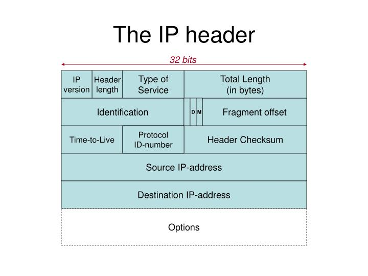 The IP header
