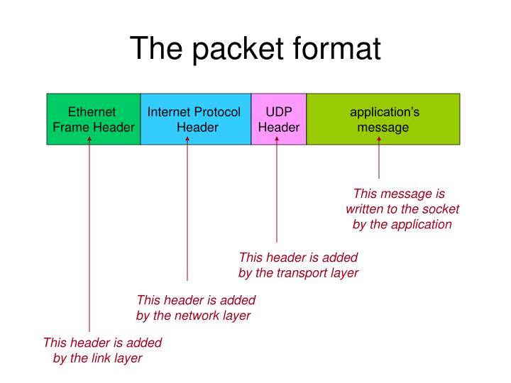 The packet format