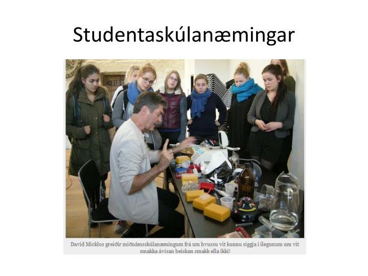 Studentaskúlanæmingar