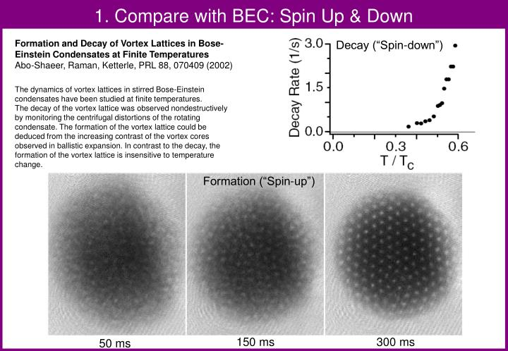 1. Compare with BEC: Spin Up & Down