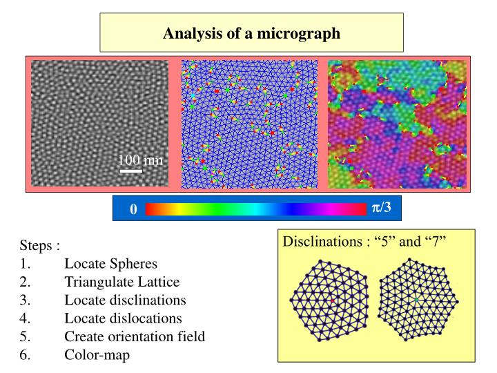 Analysis of a micrograph