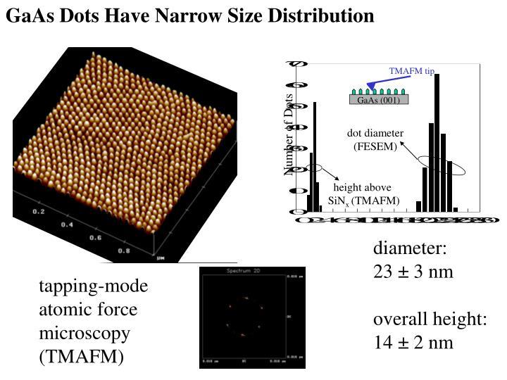 GaAs Dots Have Narrow Size Distribution