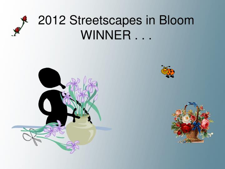 2012 Streetscapes in Bloom