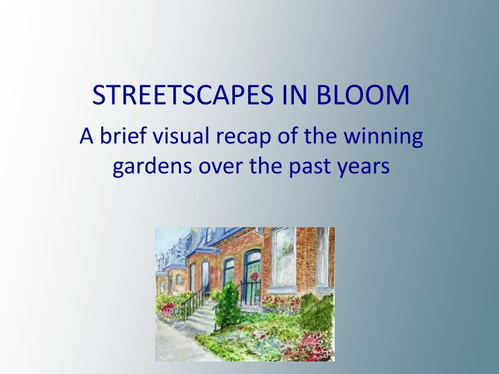 STREETSCAPES IN BLOOM
