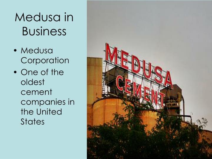 Medusa in Business