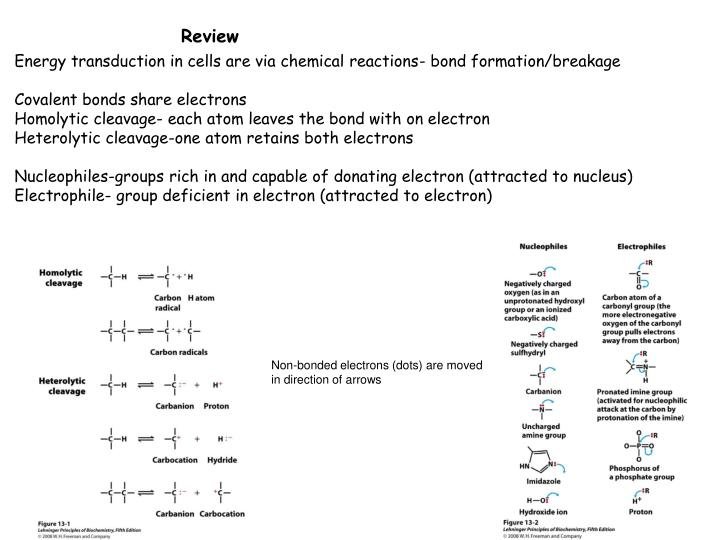 Energy transduction in cells are via chemical reactions- bond formation/breakage