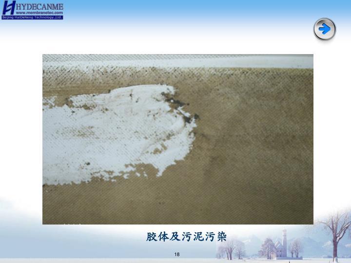 胶体及污泥污染