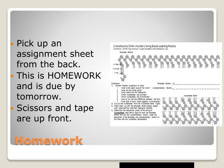 Pick up an assignment sheet from the back.
