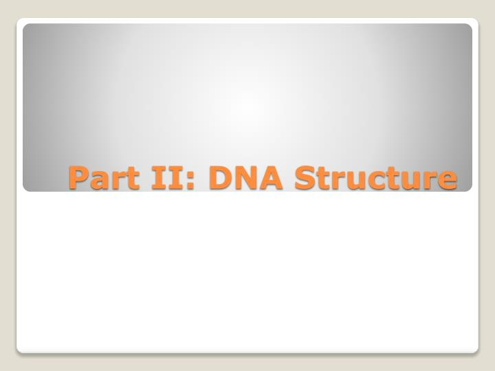 Part II: DNA Structure