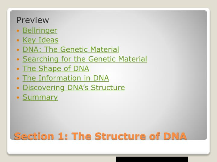 Section 1 the structure of dna