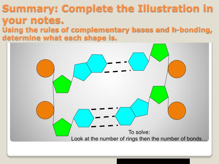 Summary: Complete the Illustration in your notes.
