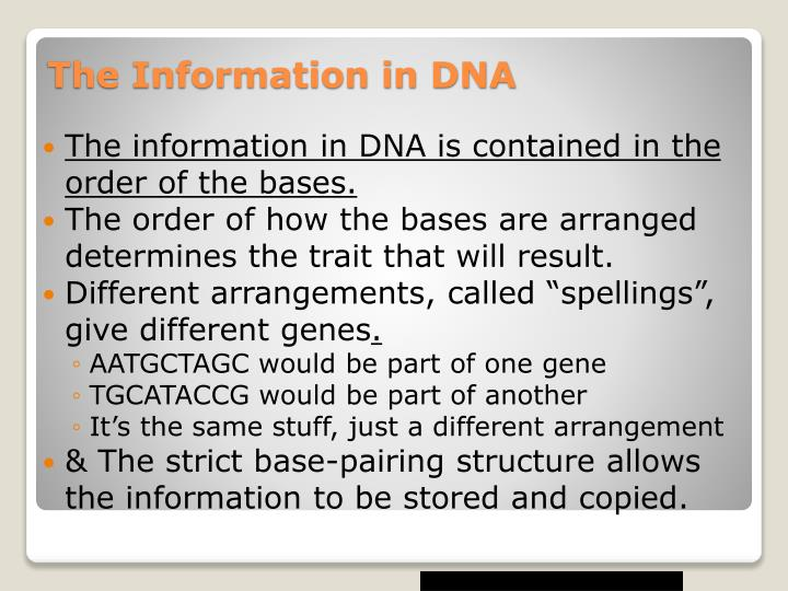 The information in DNA is contained in the order of the bases.