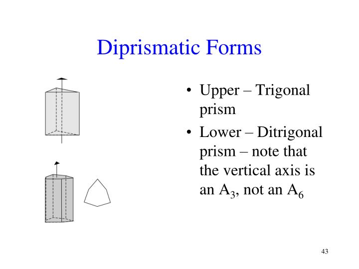 Diprismatic Forms