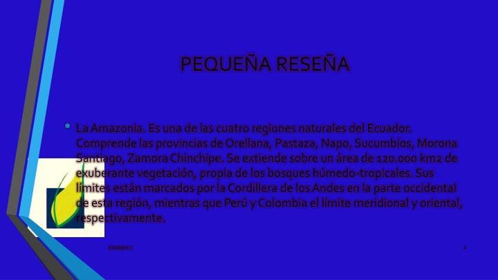 PEQUEÑA RESEÑA