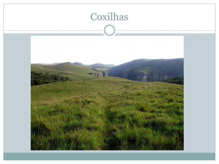 Coxilhas
