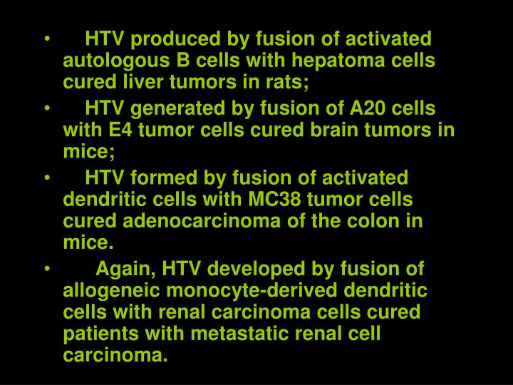 HTV produced by fusion of activated autologous B cells with hepatoma cells cured liver tumors in rats;