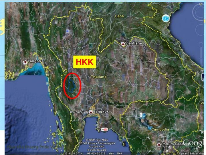 Huai Kha Khaeng Pride Work Plan
