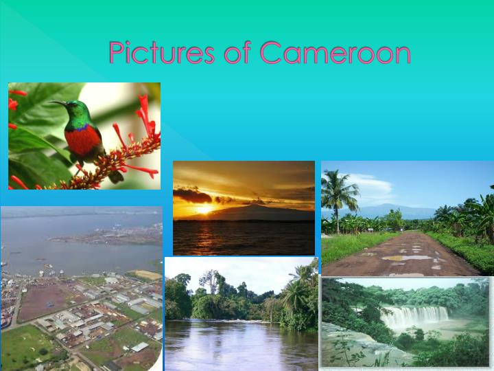 Pictures of Cameroon