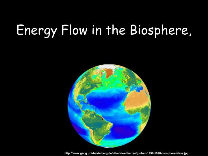 Energy Flow in the Biosphere,